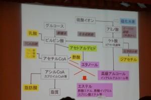 仙台日本酒サミット4